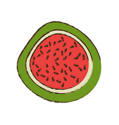 Half watermelon fruit nutrition vector