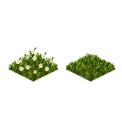 Isolated grass tile in pixel art vector image