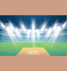 Cricket stadium with spotlights vector