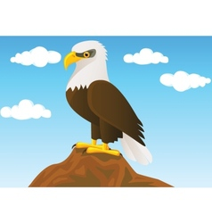 bald eagle vector image vector image
