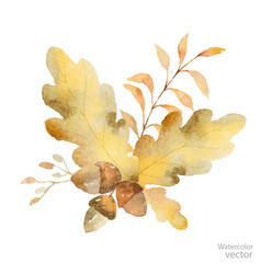 Watercolor autumn bouquet of branches and vector