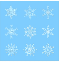 Set of beautiful snowflakes for Christmas vector image