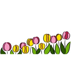 Tulips Flowers vector image