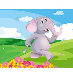 Elephant running vector
