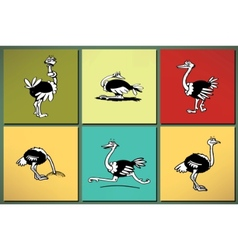 Ostrich silhouettes set vector