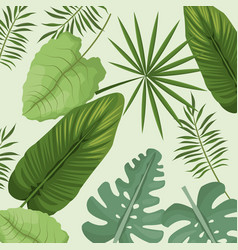 Collection palm leaves natural vector