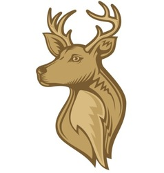 Deer head vector