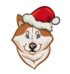 husky santa vector image