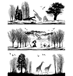 animals bear giraffe leopard in different habitats vector image