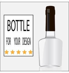 Bottle for your design vector