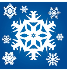 Set from original snowflakes vector