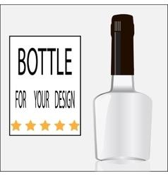 Bottle for your design vector