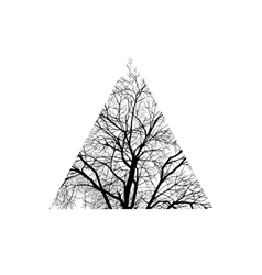 tree trimmed in a triangle vector image