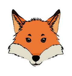 Head fox animal wildlife nature image vector