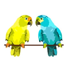 two parrots yellow and blue vector image
