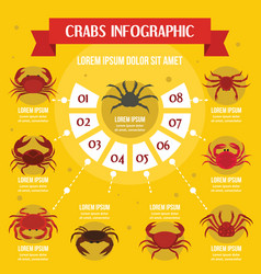 crabs infographic concept flat style vector image vector image