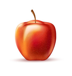 realistic red apple fruit 3d isolated vector image