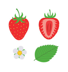red berry strawberry and a half of strawberry set vector image