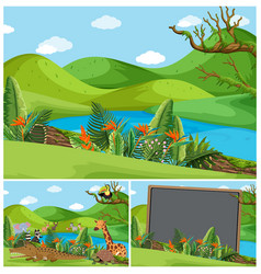 mountain scenes with many animals vector image vector image
