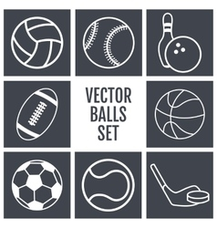 Set of white lines icons sports balls on a gray vector image