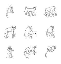 Tropical monkey icon set outline style vector
