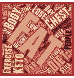 How To Lose Chest Fat text background wordcloud vector image