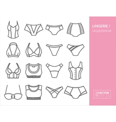 Lingerie and underwear vector image