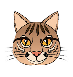 Head feline wildlife stripes animal icon vector