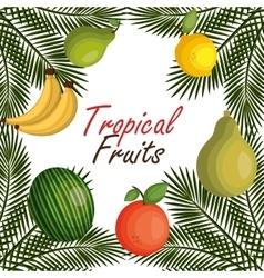 Set cartoon fruits tropicals design vector