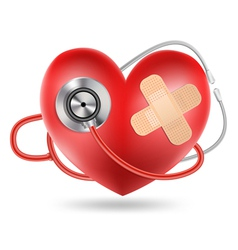 heart stethoscope vector image