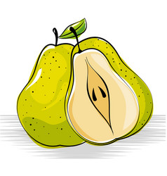 pear fresh and healthy fruit vector image