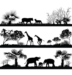 Wild animals giraffe elephant lion vector