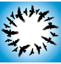 Design with birds vector image vector image