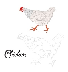 Educational game connect dots to draw hen bird vector