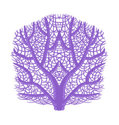 Violet fan coral tropical reef marine vector