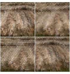 Dry straw texture collection of abstract vector