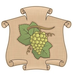 grapes with scroll vector image