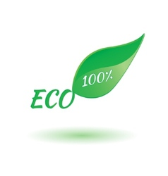 Eco product leaf vector image vector image