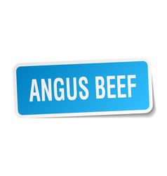 Angus beef square sticker on white vector