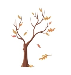 Isolated Oak Tree with Falling Leaves vector image vector image