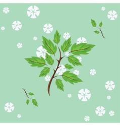 spring flowering vector image vector image