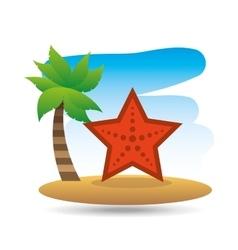 tropical vacation beach sea starfish vector image