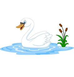 Cartoon beauty swan floats on water vector
