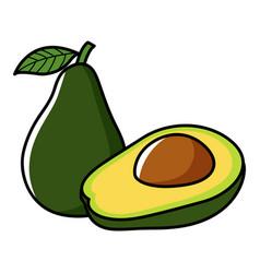 Graphic of avocado vector