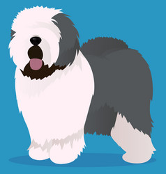 old english sheepdog vector image vector image
