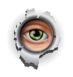 Interested eye looking in hole vector