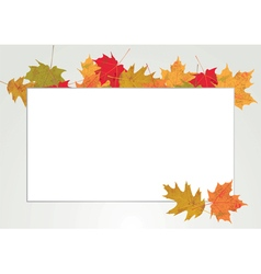 Autumn leaves copyspace vector