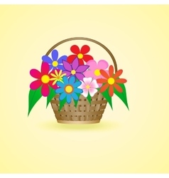 basket with beautiful flowers vector image
