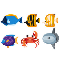 Different kinds of cute animals in the sea vector