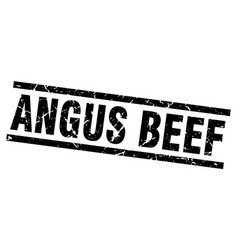 Square grunge black angus beef stamp vector